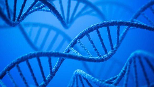 ADN cazuri neelucidate politie