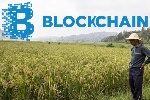 twinga ce este bitcoin ce este ethereum