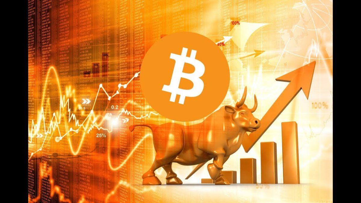 Naeem Aslam prezice ca Bitcoin va atinge 100.000$ in urmatorul bull run